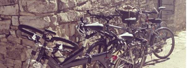 Bicicletas para pasear en nuestro retiro de meditación