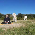 escuela de vivir retiro de meditación y creatividad