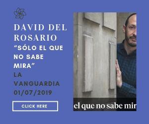 Sólo el que no sabe mira - David del Rosario